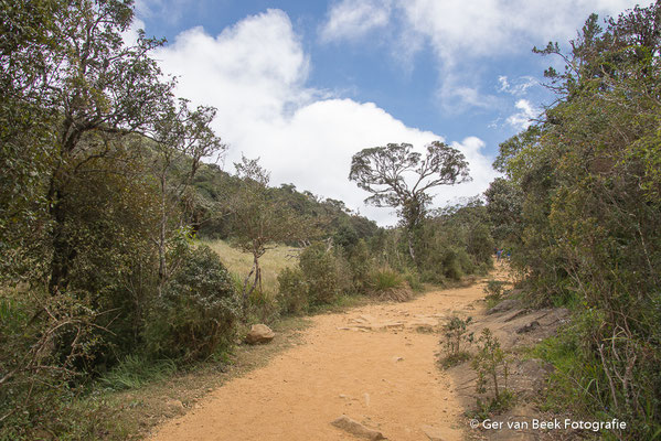 Horton Plains nationale park