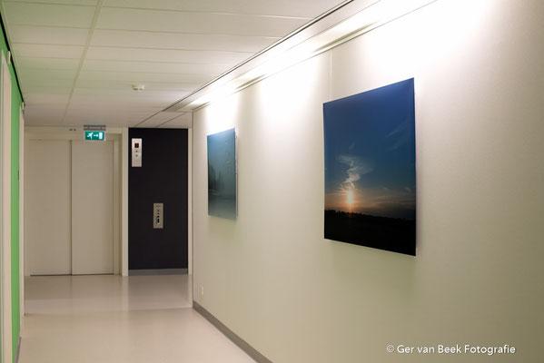 Polikliniek Longziekten, Jeroen Bosch Ziekenhuis