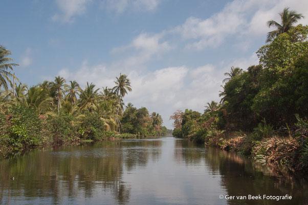 Lagune nabij Negombo