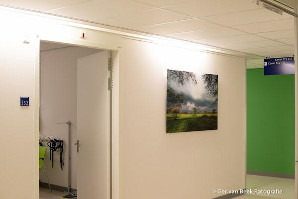 Longfunctieafdeling, Jeroen Bosch Ziekenhuis