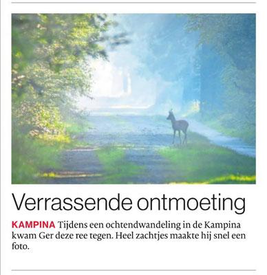 Verassende ontmoeting, Brabants Dagblad