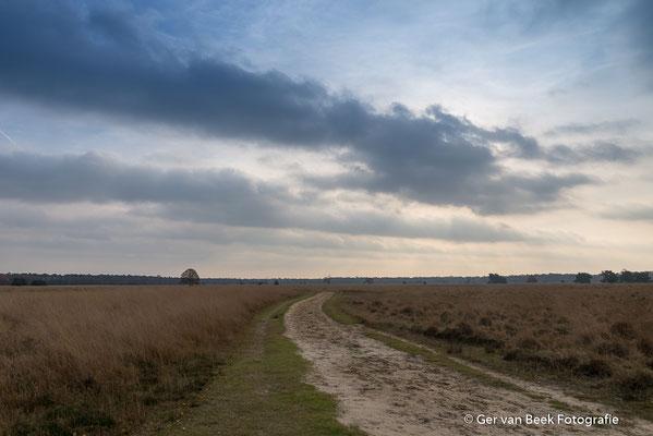 van Tienhovenweg