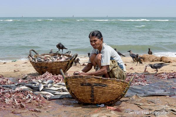 Vis schoonmaken op het strand