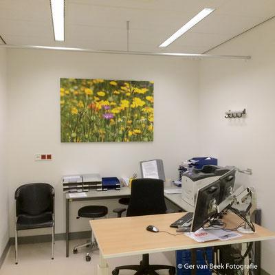 Polikliniek cardiologie, Jeroen Bosch Ziekenhuis