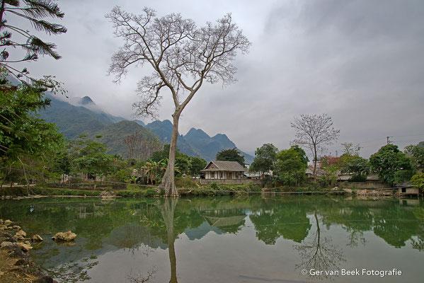 Mau Chau