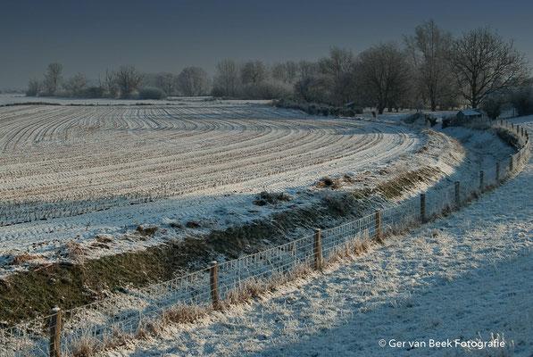 Sneeuwlandschap