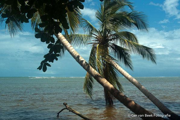 Caribische oceaan
