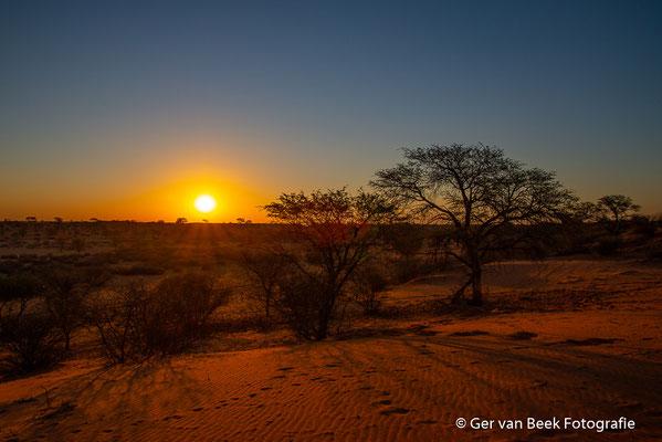 Zonsondergang in de Kalahariwoestijn