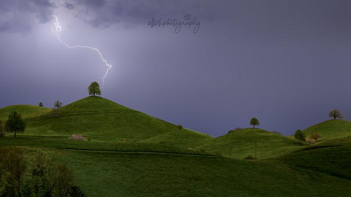 04.05.2019 - Schweiz - Hirzel - Hügel und Bäume (Wunschbild für diesen Sommer / Blitz mit Photoshop eingefügt)