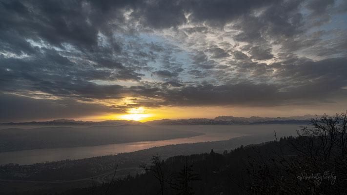 06.02.2021 - Zürich - Uetliberg