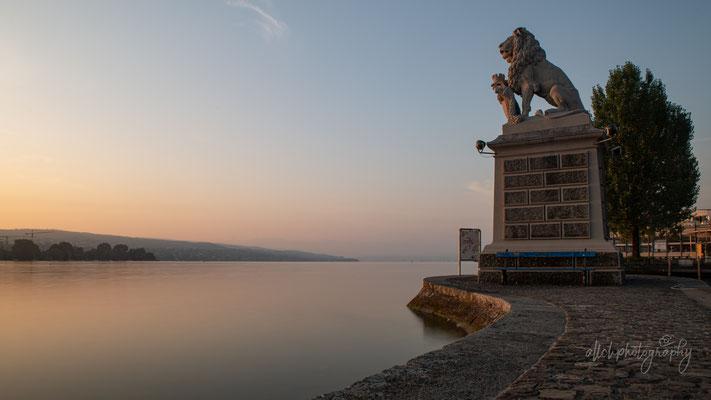 31.08.2019 - Zürich - Löwendenkmal Hafen Enge