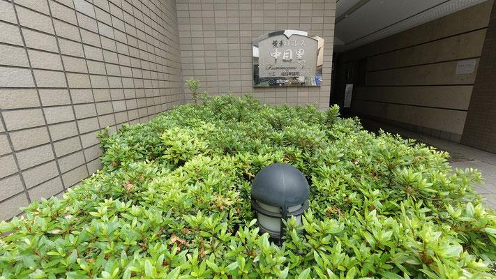 植栽内の電灯が点滅する@菱和パレス中目黒管理組合ブログ