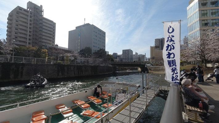オープンボートで目黒川の桜クルーズ@菱和パレス中目黒管理組合ブログ