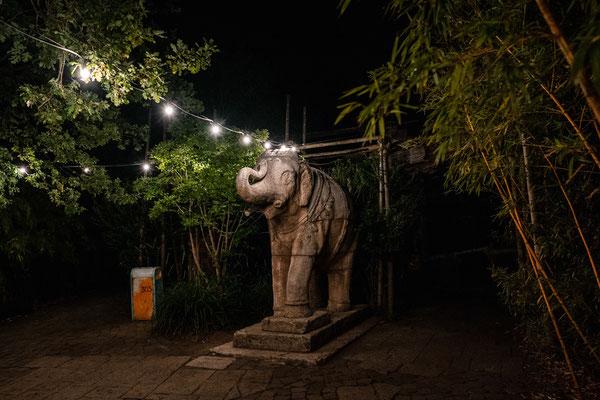 Hochzeit Hannover Zoo Prunksaal des Maharadscha