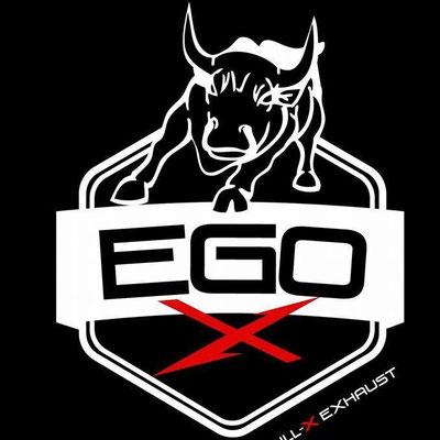 EGO-X