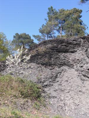 Vestiges témoignant d'une ancienne exploitation d'ardoise dans les landes