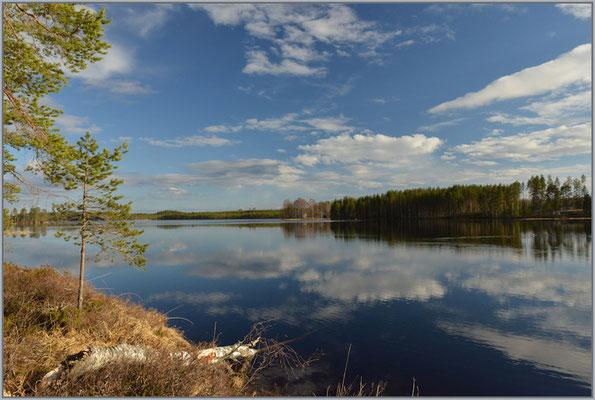 Naarajärvisee