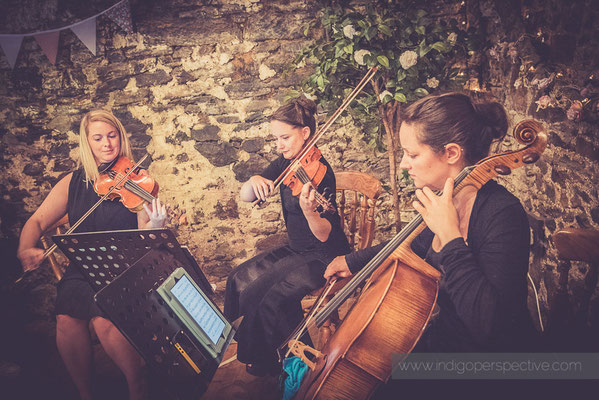 12-westcott-barton-wedding-photography-north-devon-strings-music