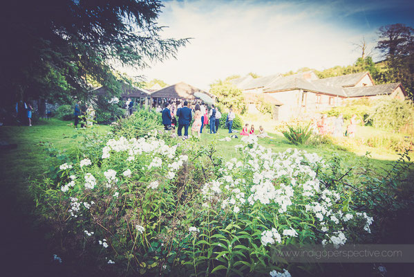 56-westcott-barton-wedding-photography-north-devon-gardens