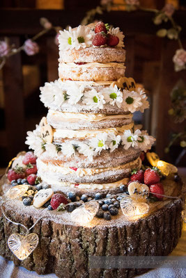29-westcott-barton-wedding-photography-north-devon-naked-cake