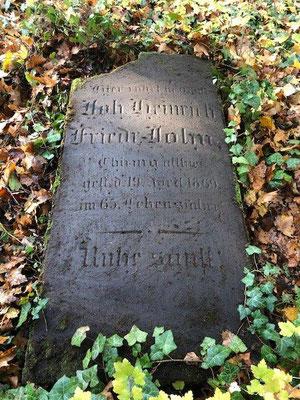 """Komplett unter Efeu wurde noch ein Grabstein """"wiederentdeckt""""."""