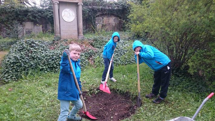 Fritz, Elias und Johannes pflanzen Blumen auf der Gemeindewiese...