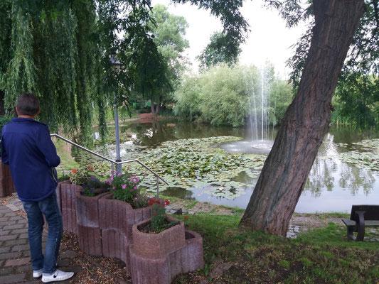 Schöner Teich neben der Gartenwirtschaft