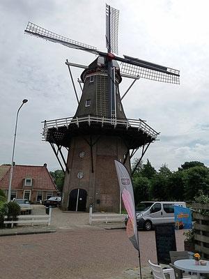 Die Windmühle bei Anjum