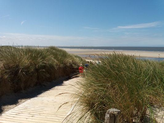 Über die Dünen an den Strand
