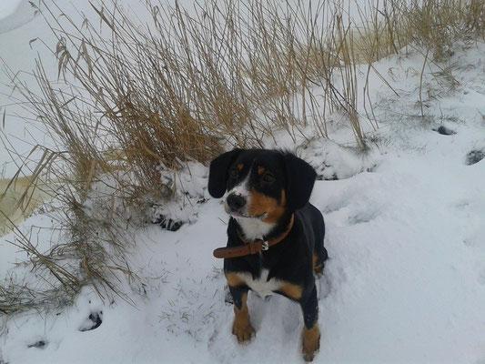 Ich liebe Schnee!