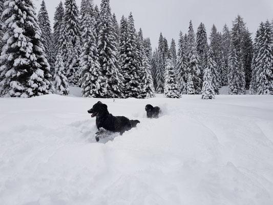 Schneespaß
