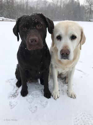 Trudie und Greta