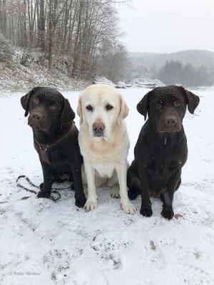 Käthe, Greta, Trudie