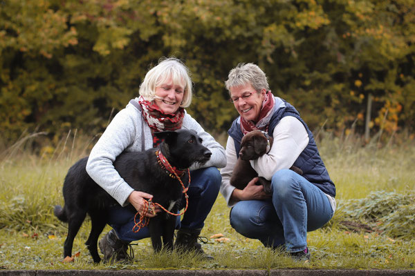 Jala (rosa) wohnt jetzt mit ihrer Hundefreundin Frida in Nienburg an der Weser