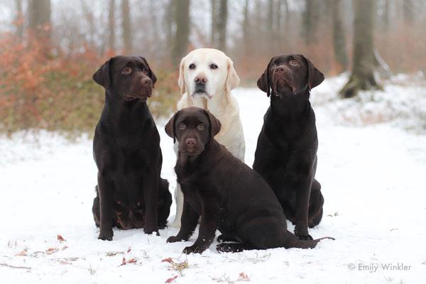 hinten(vlnr.) Trudie, Greta und Käthe