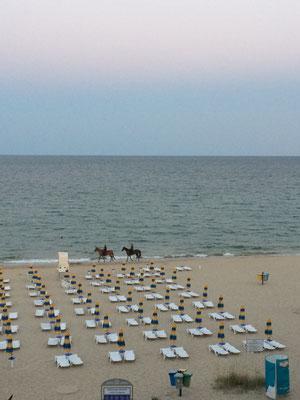 Strand, Meer und Pferde