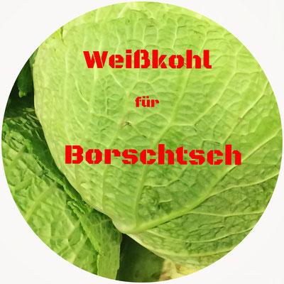 Weißkohl für Borschtsch