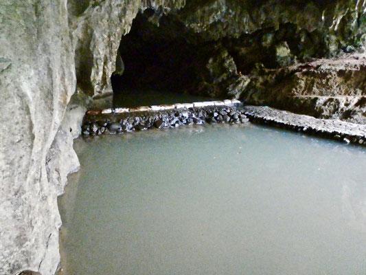 Pung Chang Cave, Phang- Nga