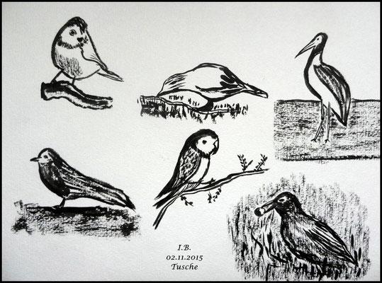Vögel am Boden und auf dem Baum/ Blatt 1/Tusche