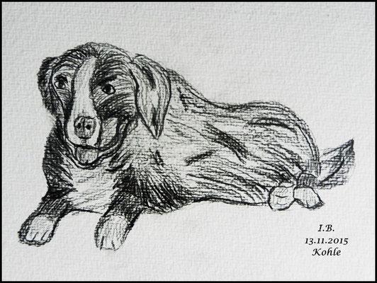 Kohle ist nicht so mein Ding. Dem Hund fehlt die Dreidimensionalität.