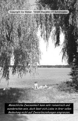 Am Wandlitzsee (freier Zugang unweit des Strandbads) - Die schönen Weiden wurden leider gefällt.