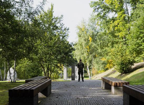 Wald der Erinnerung, fotografiert Nikon Z7II + Z6II Nikkor Z 50mm F/1: 1,2 S + Nikkor Z 20mm 1,8 S