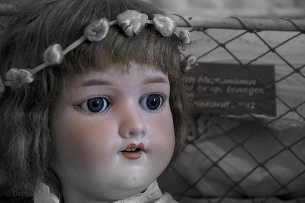 Por3: Puppenportrait 3