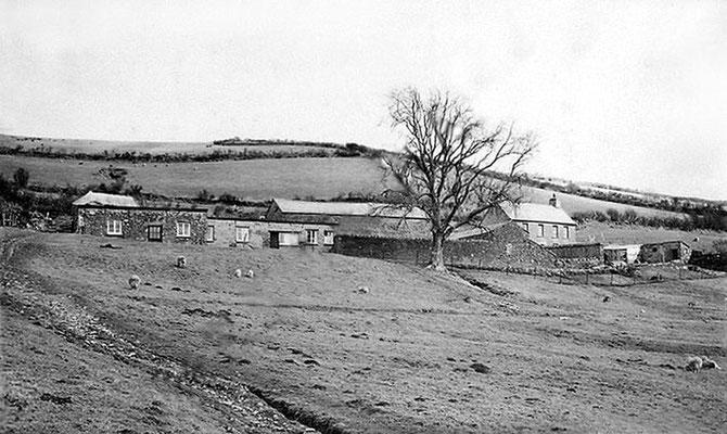 THE FARMHOUSE - Courtesy of MNP