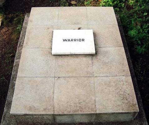 Warrior the Alsation dog's tomb