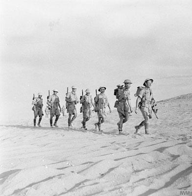 Allied troops of patrol