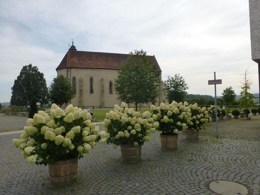 Blick auf das Kloster Haydau © Ina Homfeld