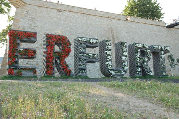 Mit großen Lettern am Petersberg wirbt die Stand Erfurt für die BUGA  (© Ina Homfeld)