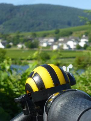 die Biene - ständige Begleiterin