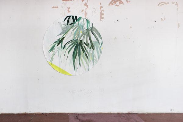 Flora frame #2 | tecnica mista su carta | 150ø | 2016-2017 installato view